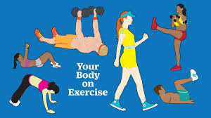 rules of exercise to know